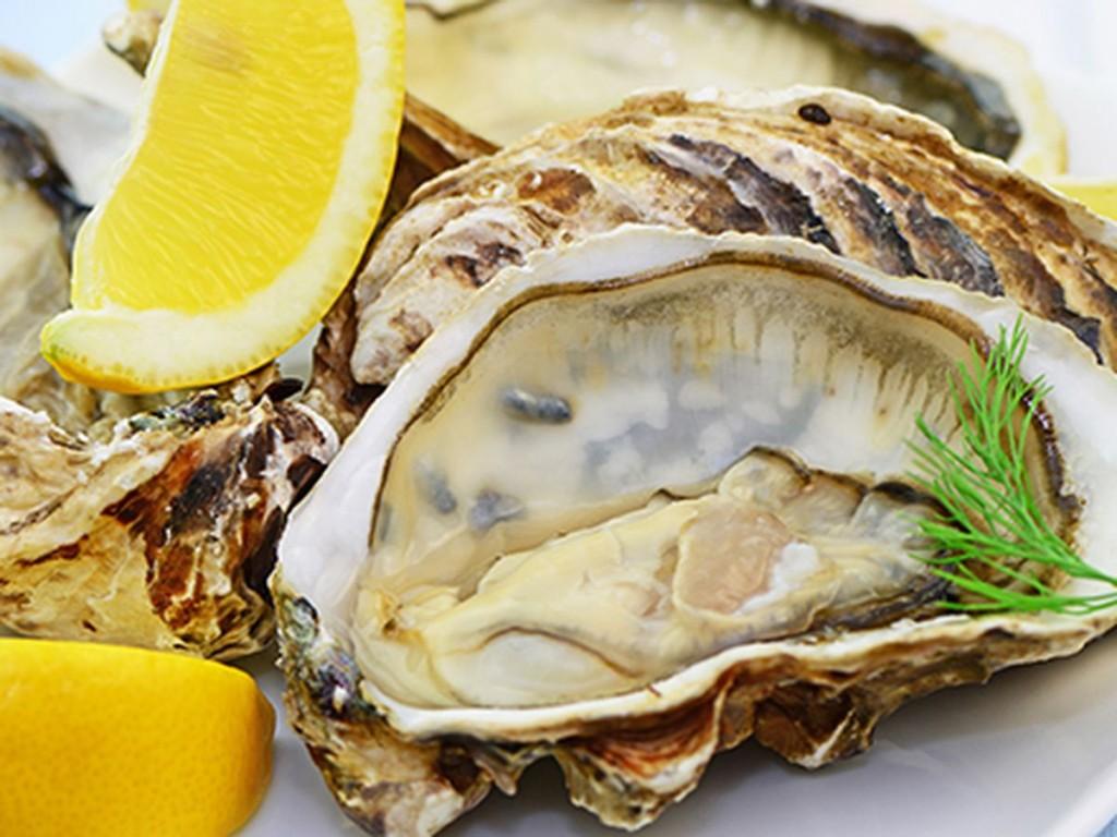 Oyster_Bar_Harrah_s.0.0