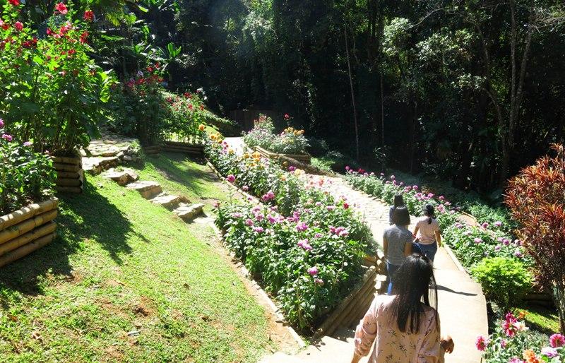 2b. Dạo con phố cáo nhất Thái Lan còn được ngang qua những đường hoa đẹp ai lại chẳng thích.