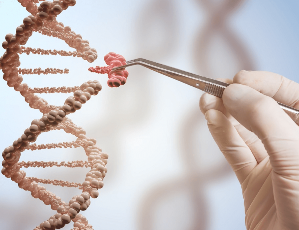 Một tuần sau khi nhà khoa học Trung Quốc He Jiankui tuyên bố tạo ra những em bé chỉnh sửa gien, tổ chức Y tế thế giới (WHO) cho biết đang thành lập một nhóm nghiên cứu về những vấn đề an toàn, xã hội, đạo đức mà công nghệ này tạo ra.