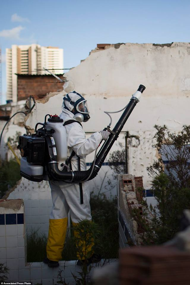 Một nhân viên đô thị đang phun thuốc diệt muỗi Aedes aegypti truyền virus Zika tại vùng phụ cận Imbiribeira ở Recife.