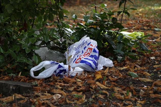 Tác hại môi trường của nhựa đối với trái đất ngày càng khổng lồ.