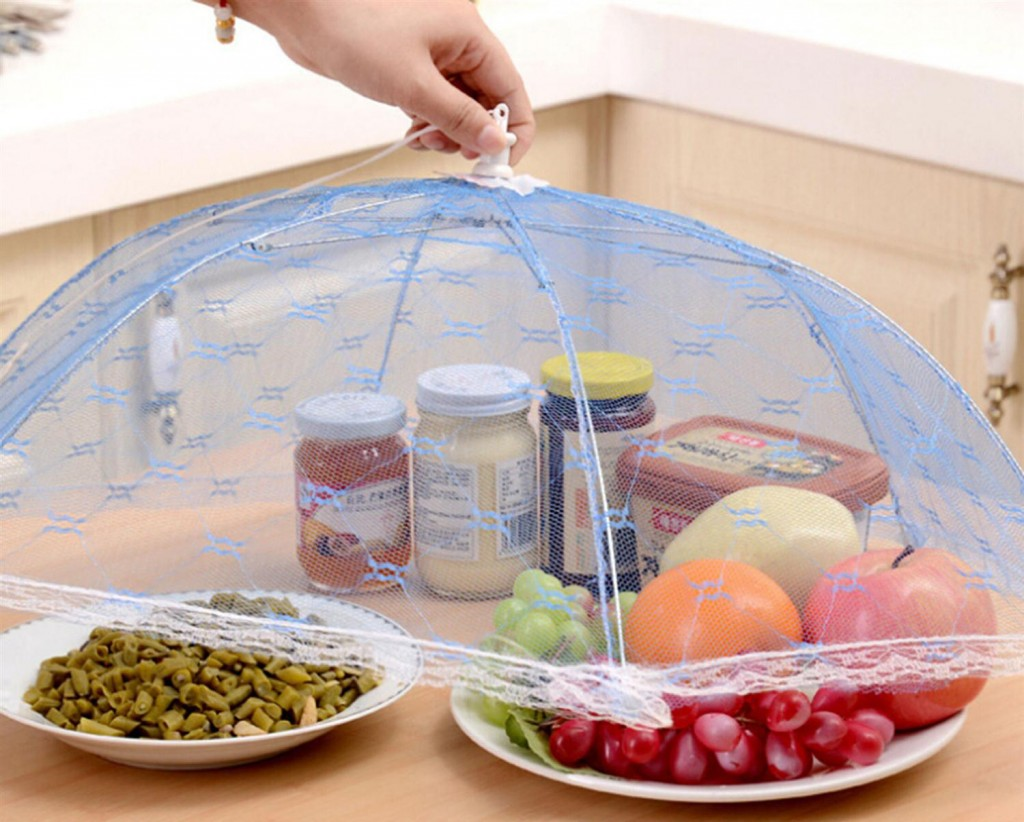 protect food from flies